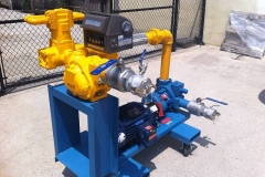 GORMAN RUPP PUMP SKID WITH LC FLOW METER